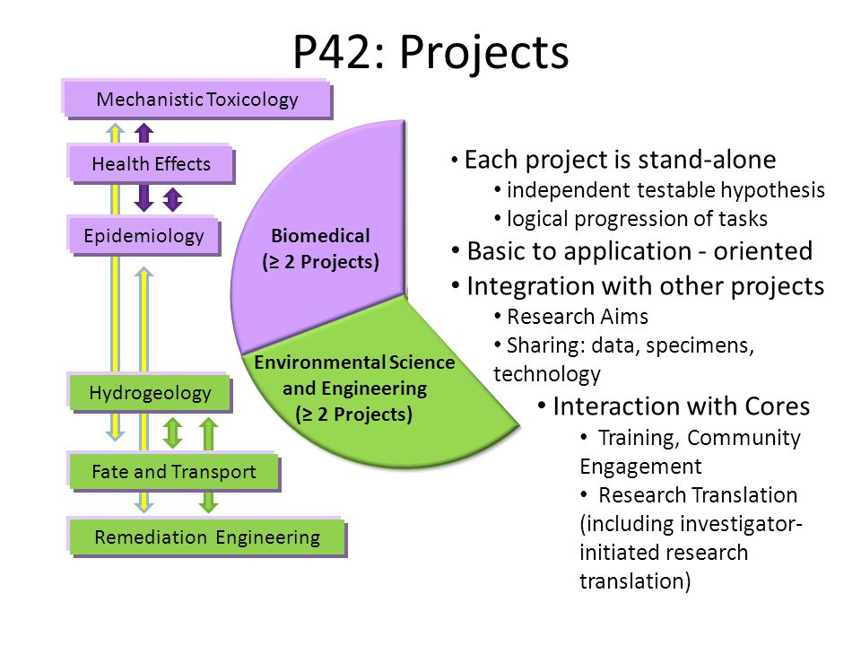 Health Effects Epidemiology Mechanistic Toxicology Fate and Transport Hydrogeology Remediation Engineering Biomedical (≥ 2 Projects) Environmental Science and Engineering (≥ 2 Projects) P42: Projects 38 Each project is stand-alone independent testable hypothesis logical progression of tasks Basic to application - oriented Integration with other projects Research Aims Sharing: data, specimens, technology Interaction with Cores Training, Community Engagement Research Translation (including investigator- initiated research translation)