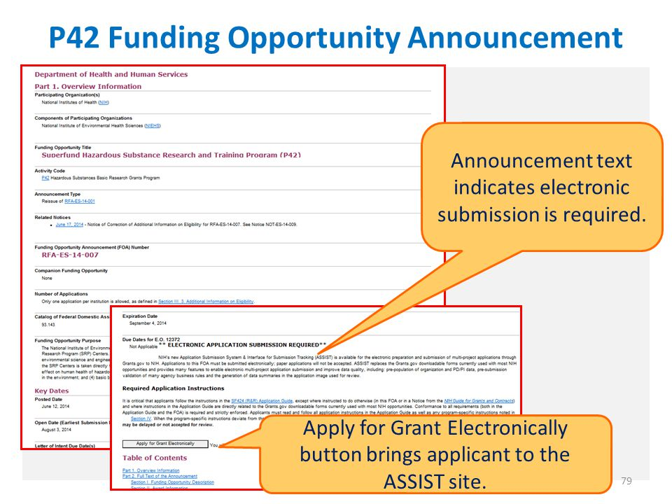 P42 Funding Opportunity Announcement 79 Announcement text indicates electronic submission is required.