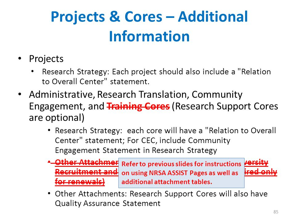 Projects & Cores – Additional Information Projects Research Strategy: Each project should also include a Relation to Overall Center statement.