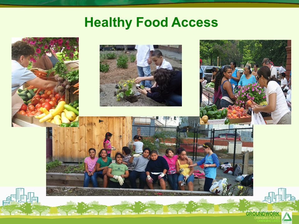 Healthy Food Access