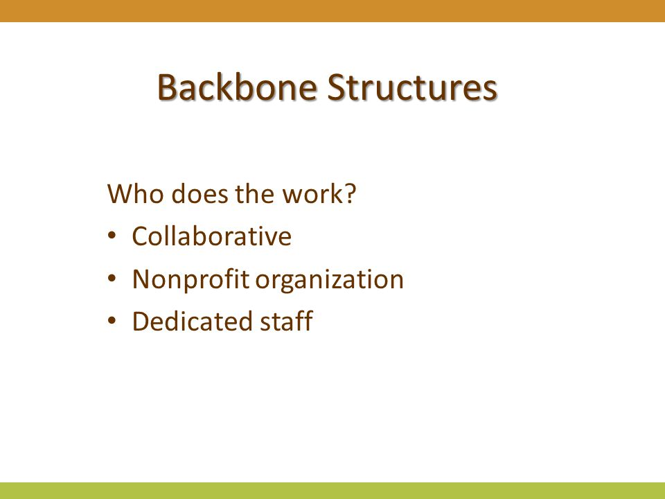 Backbone Structures Who does the work? Collaborative Nonprofit organization Dedicated staff