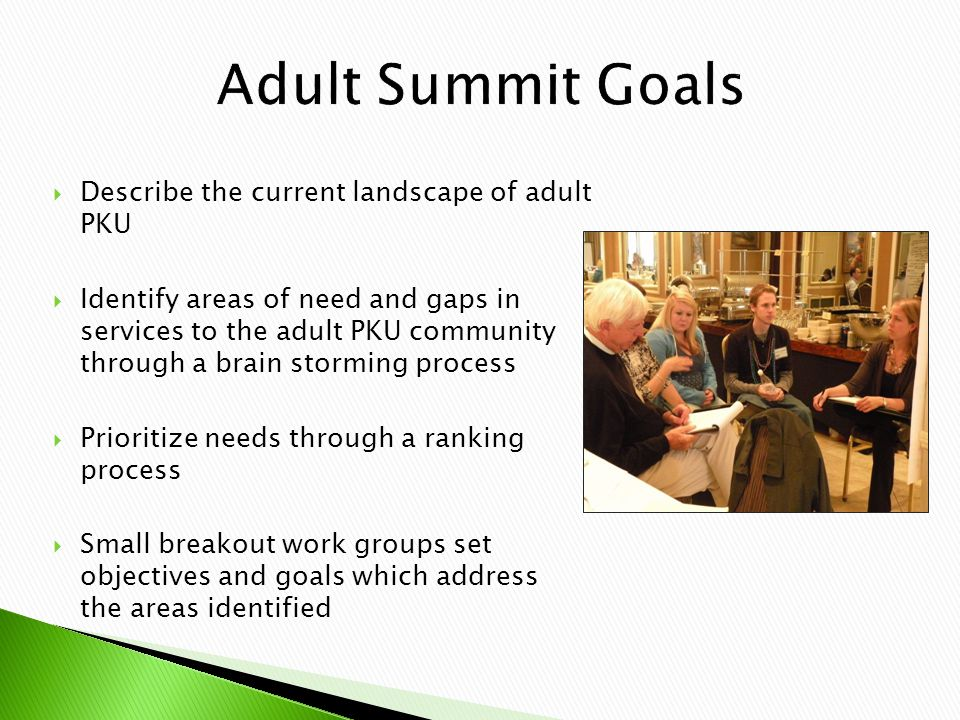  Describe the current landscape of adult PKU  Identify areas of need and gaps in services to the adult PKU community through a brain storming process  Prioritize needs through a ranking process  Small breakout work groups set objectives and goals which address the areas identified