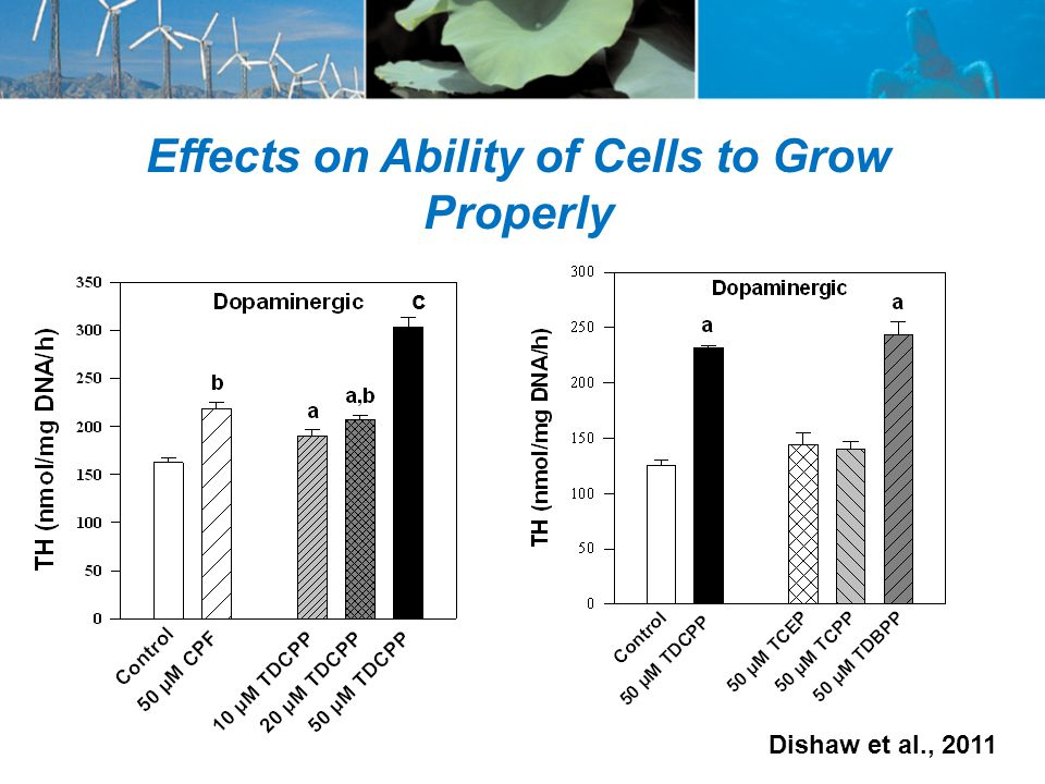 Effects on Ability of Cells to Grow Properly Dishaw et al., 2011 c