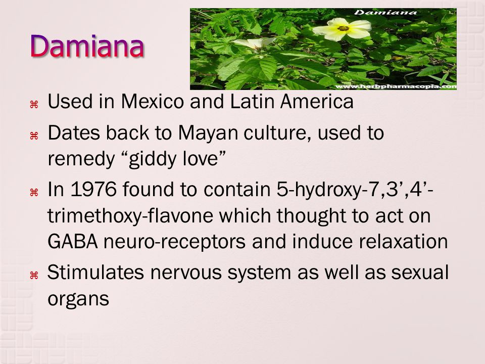 " Used in Mexico and Latin America  Dates back to Mayan culture, used to remedy ""giddy love""  In 1976 found to contain 5-hydroxy-7,3',4'- trimethoxy"