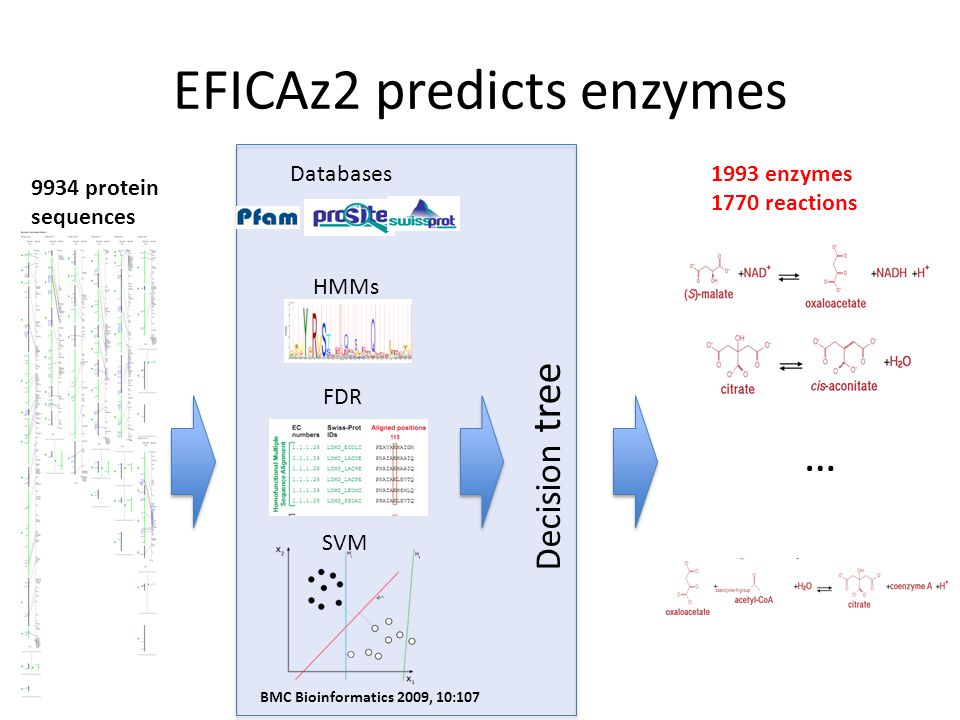 EFICAz2 predicts enzymes … Decision tree Databases HMMs FDR SVM 9934 protein sequences 1993 enzymes 1770 reactions BMC Bioinformatics 2009, 10:107