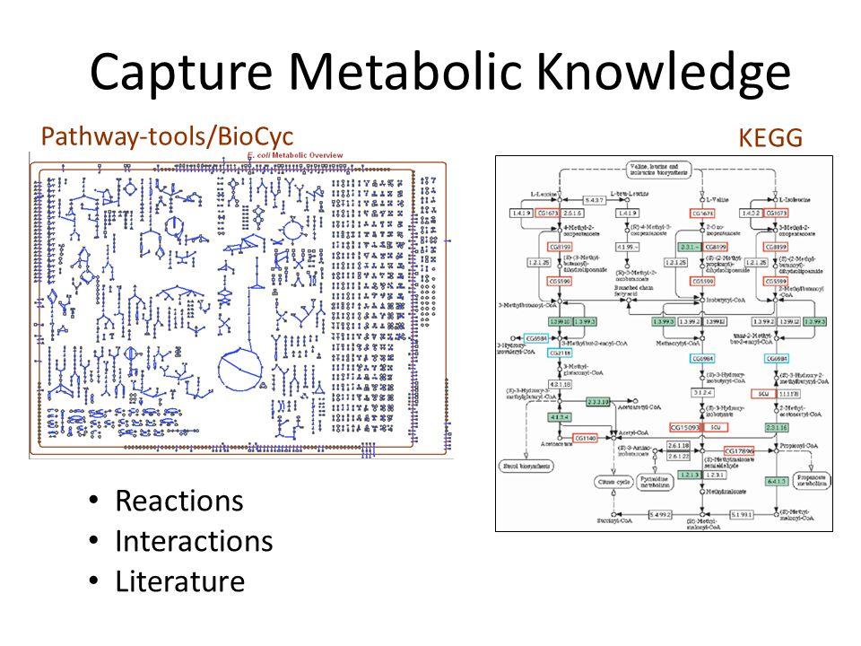 Visualizing 'omics Data Provide a visually intuitive, metabolic framework for interpreting large 'omics datasets