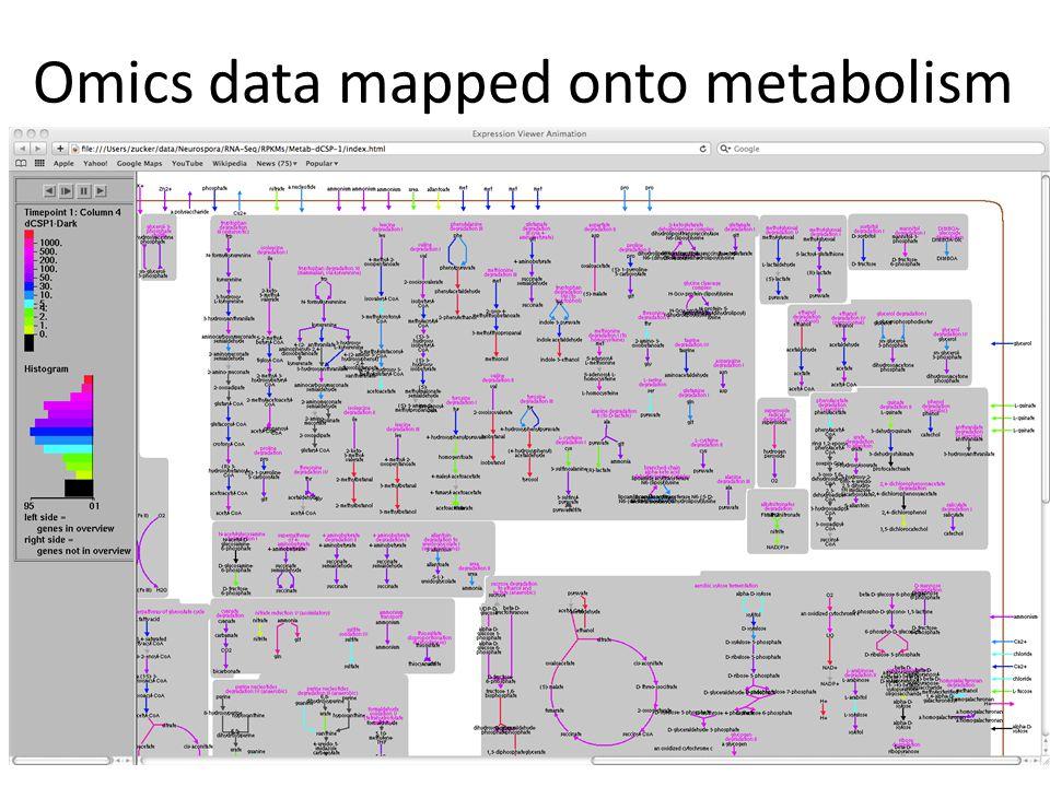Omics data mapped onto metabolism