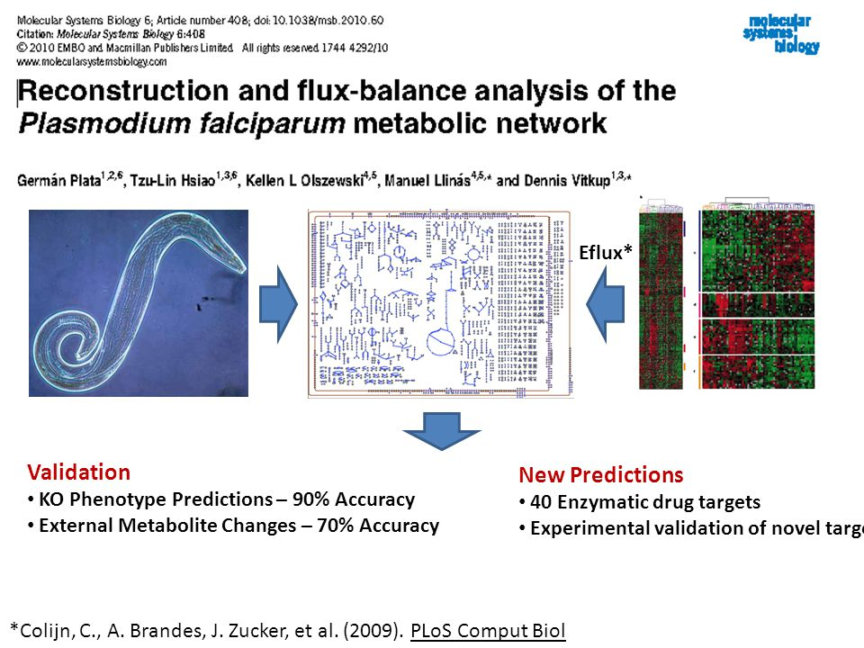 Example: Plasmodium Validation KO Phenotype Predictions – 90% Accuracy External Metabolite Changes – 70% Accuracy New Predictions 40 Enzymatic drug targets Experimental validation of novel target Eflux* *Colijn, C., A.