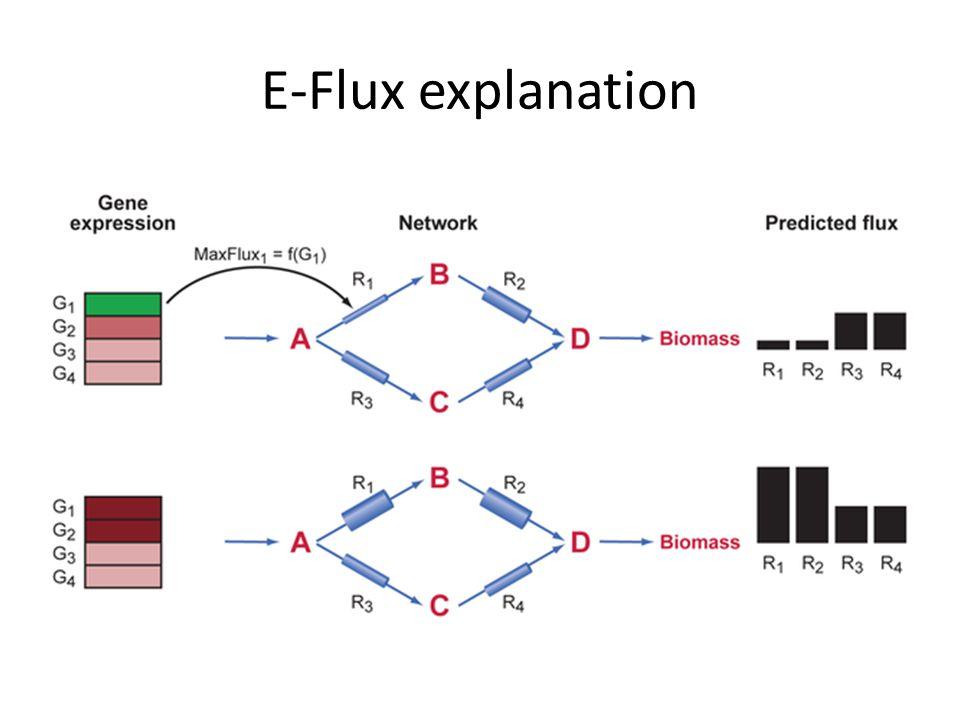 E-Flux explanation