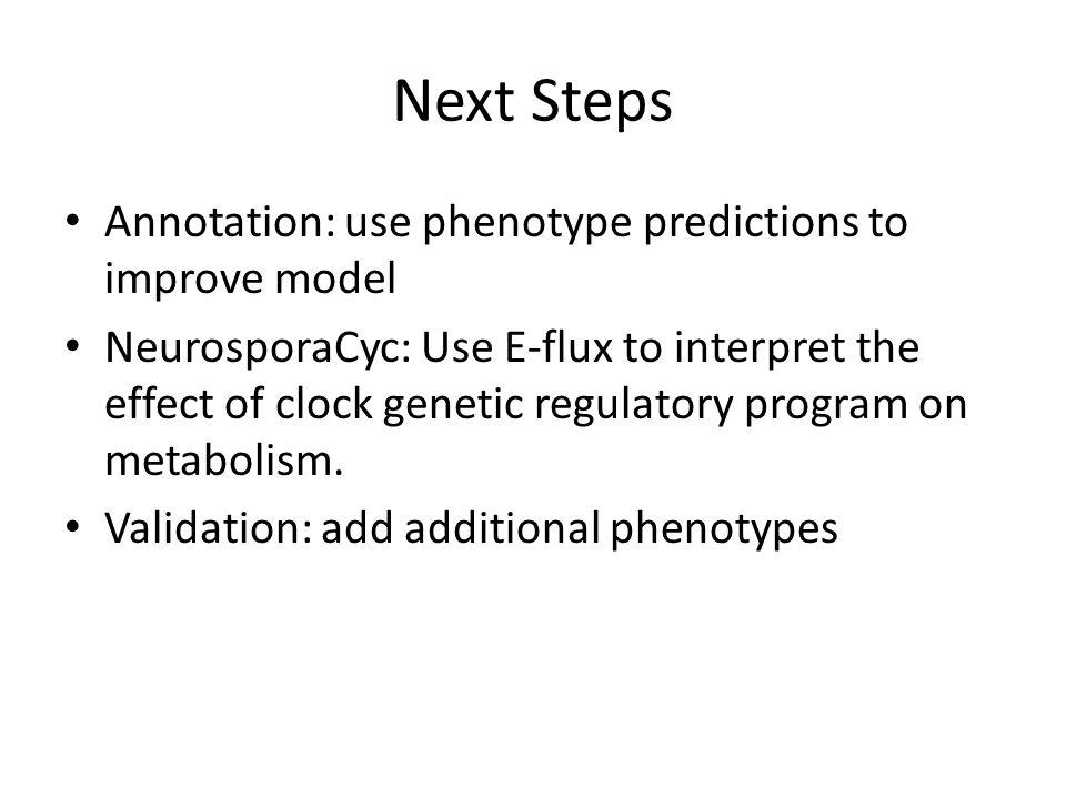 Next Steps Annotation: use phenotype predictions to improve model NeurosporaCyc: Use E-flux to interpret the effect of clock genetic regulatory program on metabolism.