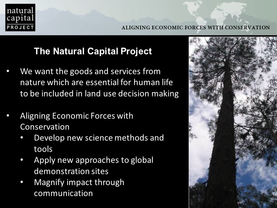 The Natural Capital Project We want the goods and services from nature which are essential for human life to be included in land use decision making A