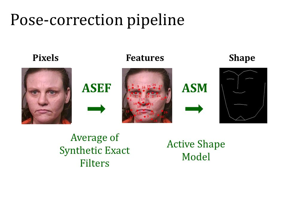 Average of Synthetic Exact Filters Active Shape Model Pose-correction pipeline PixelsFeaturesShape ASEFASM