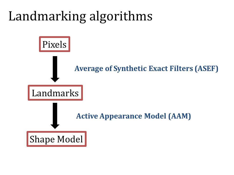 Pixels Landmarks Shape Model Average of Synthetic Exact Filters (ASEF) Active Appearance Model (AAM) Landmarking algorithms