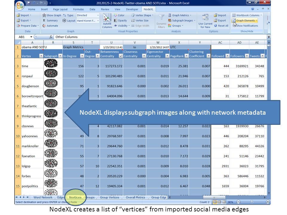 NodeXL creates a list of vertices from imported social media edges NodeXL displays subgraph images along with network metadata