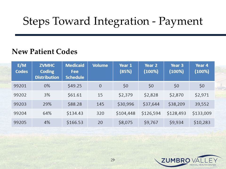 Steps Toward Integration - Payment E/M Codes ZVMHC Coding Distribution Medicaid Fee Schedule VolumeYear 1 (85%) Year 2 (100%) Year 3 (100%) Year 4 (10