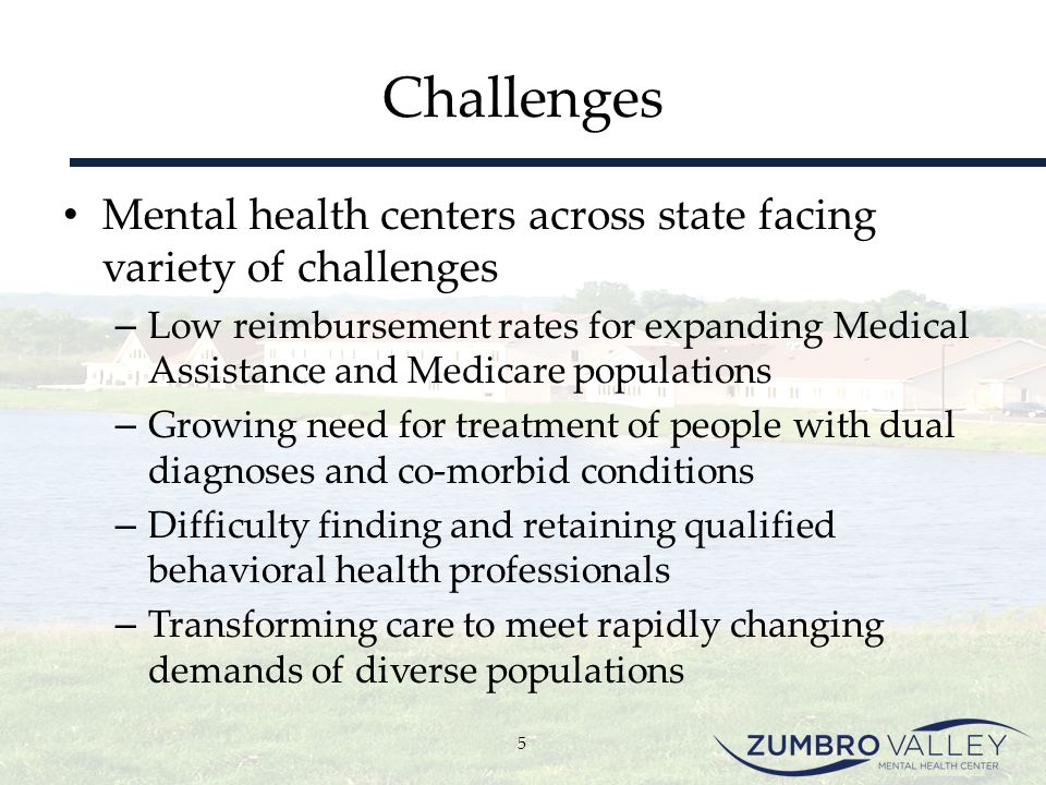 Steps Toward Integration – Planning (Phase 2) Trust major issue for target population – People diagnosed with a serious mental illness significantly less likely to trust others – Lack of follow-through by these clients with community medical providers – Survey found clients view Zumbro Valley MHC as their primary care provider 16
