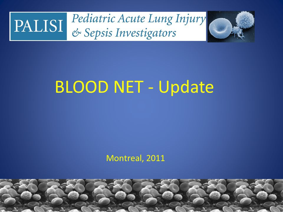 BLOOD NET - Update Montreal, 2011