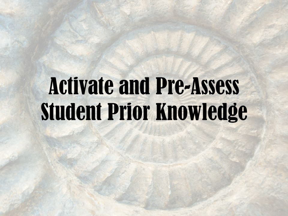 Activate and Pre-Assess Student Prior Knowledge