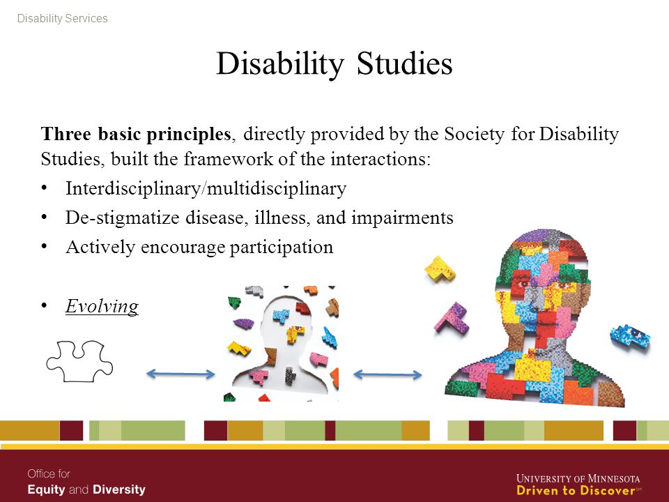 Disability Services Disability Studies Three basic principles, directly provided by the Society for Disability Studies, built the framework of the int