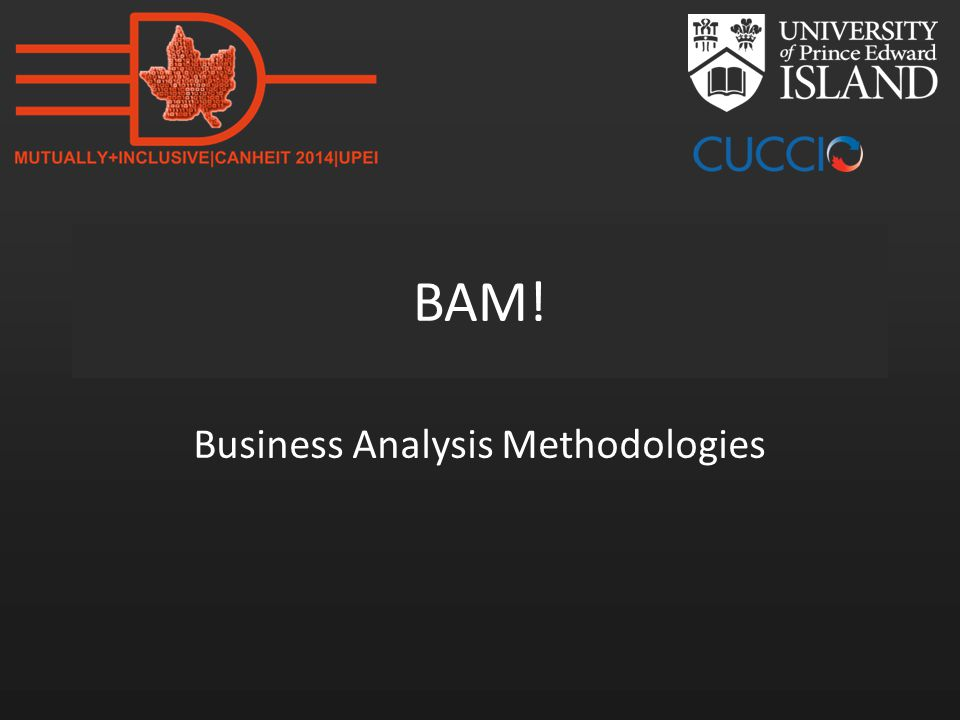 BAM! Business Analysis Methodologies