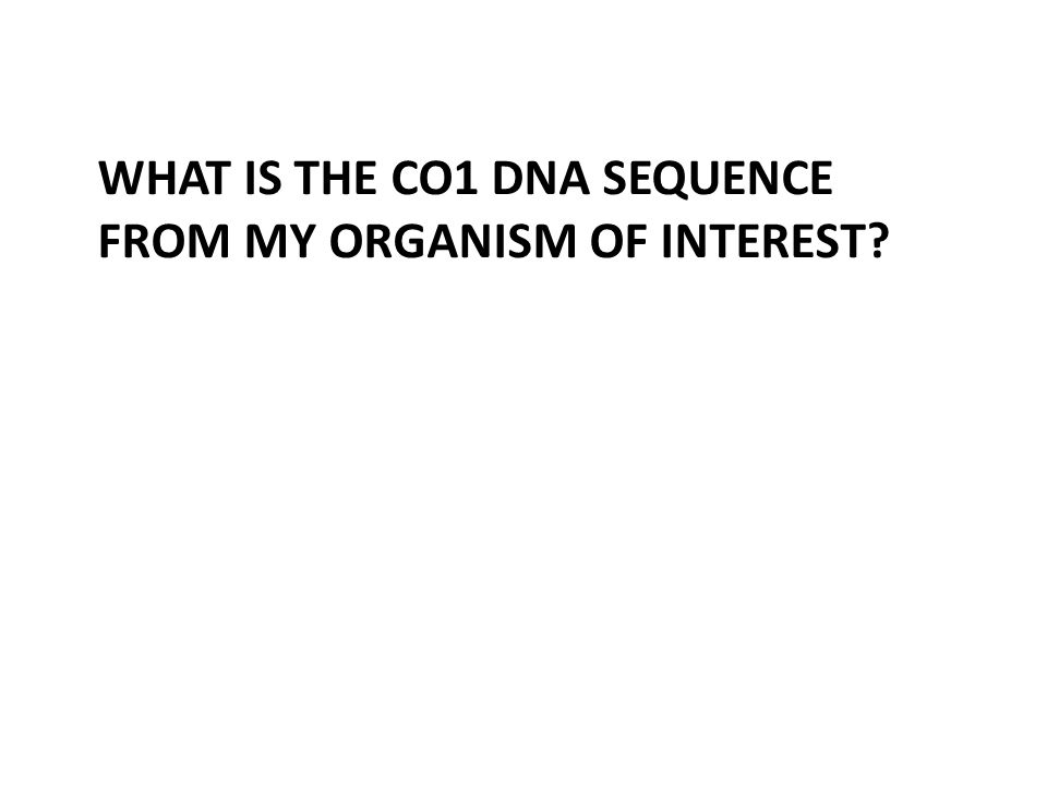 WHAT IS THE CO1 DNA SEQUENCE FROM MY ORGANISM OF INTEREST?