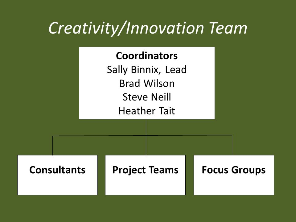 Creativity/Innovation Team Coordinators Sally Binnix, Lead Brad Wilson Steve Neill Heather Tait Consultants Project Teams Focus Groups