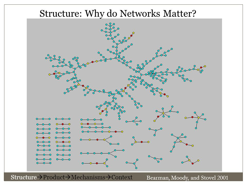 Bearman, Moody, and Stovel 2001 Structure: Why do Networks Matter.
