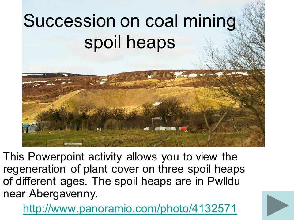 Succession on coal mining spoil heaps This Powerpoint activity allows you to view the regeneration of plant cover on three spoil heaps of different ages.