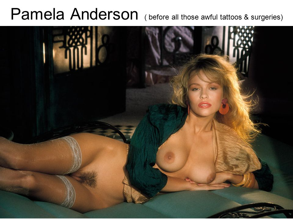 Pamela Anderson ( before all those awful tattoos & surgeries)