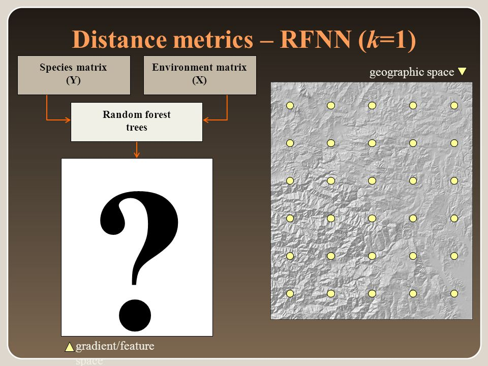 Distance metrics – RFNN (k=1) geographic space gradient/feature space Random forest trees Environment matrix (X) Species matrix (Y)