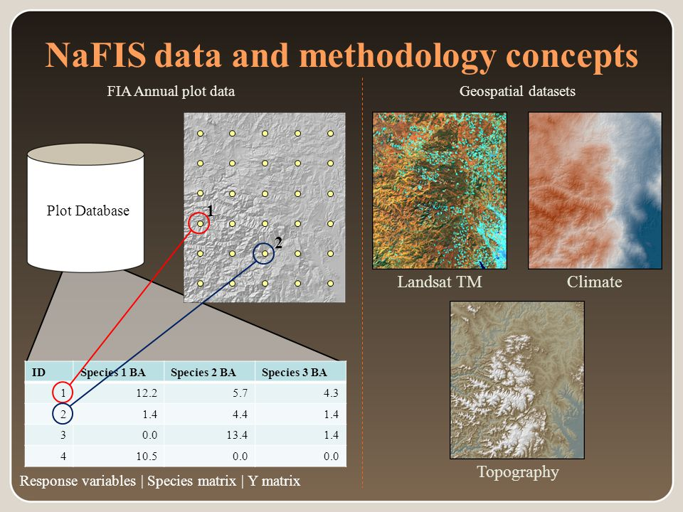 Plot Database NaFIS data and methodology concepts Geospatial datasetsFIA Annual plot data IDSpecies 1 BASpecies 2 BASpecies 3 BA 112.25.74.3 21.44.41.4 30.013.41.4 410.50.0 Response variables | Species matrix | Y matrix 1 2 Topography ClimateLandsat TM