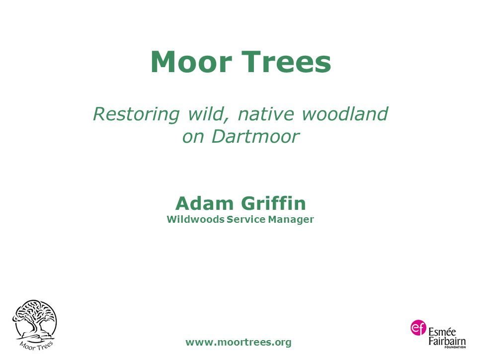www.moortrees.org Moor Trees Restoring wild, native woodland on Dartmoor Adam Griffin Wildwoods Service Manager