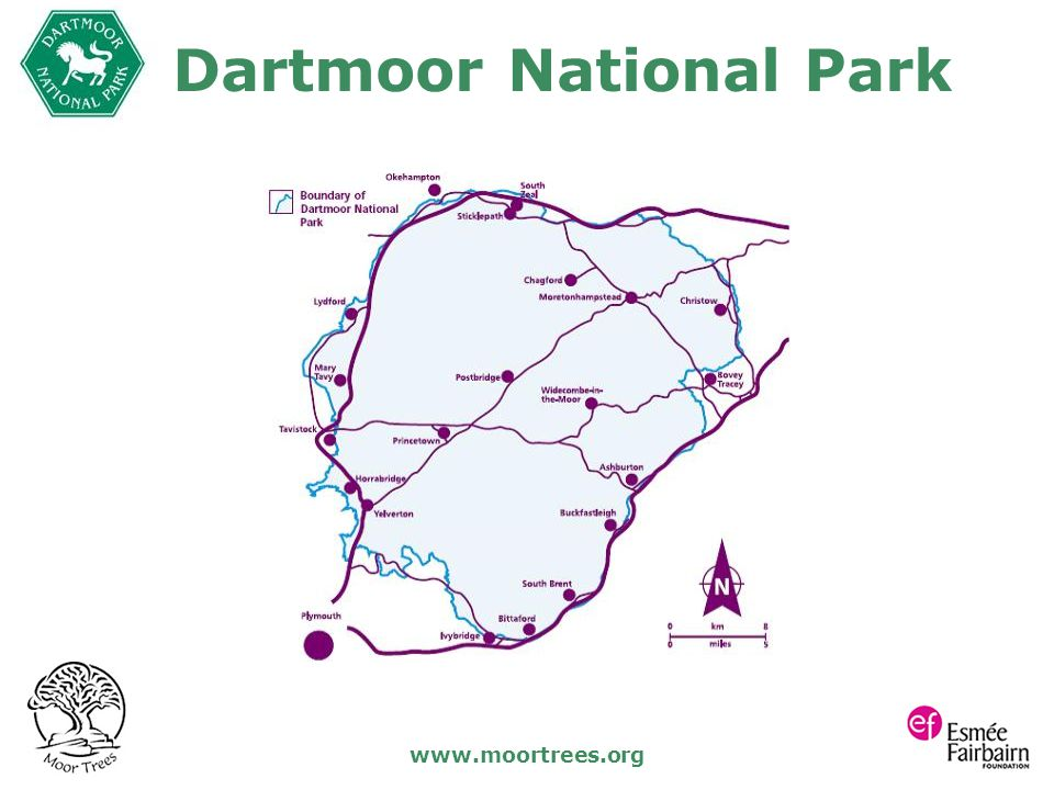 www.moortrees.org Dartmoor National Park