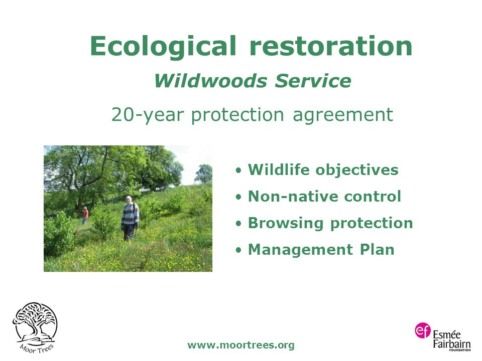 www.moortrees.org Wildwoods Service 20-year protection agreement Wildlife objectives Non-native control Browsing protection Management Plan Ecological restoration