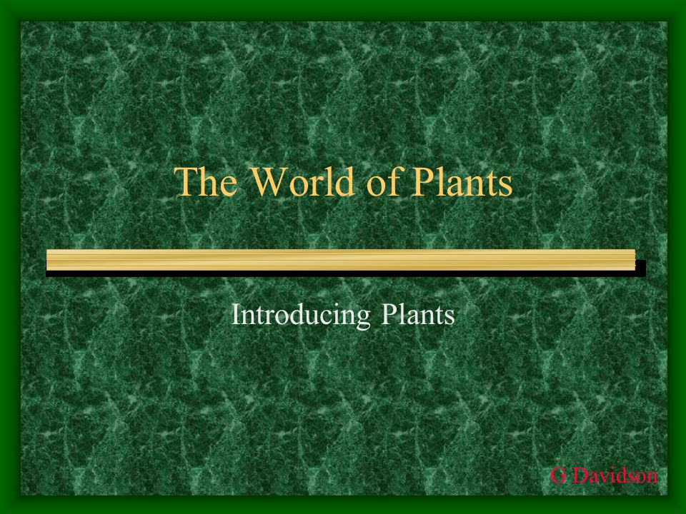 The World of Plants Introducing Plants G Davidson