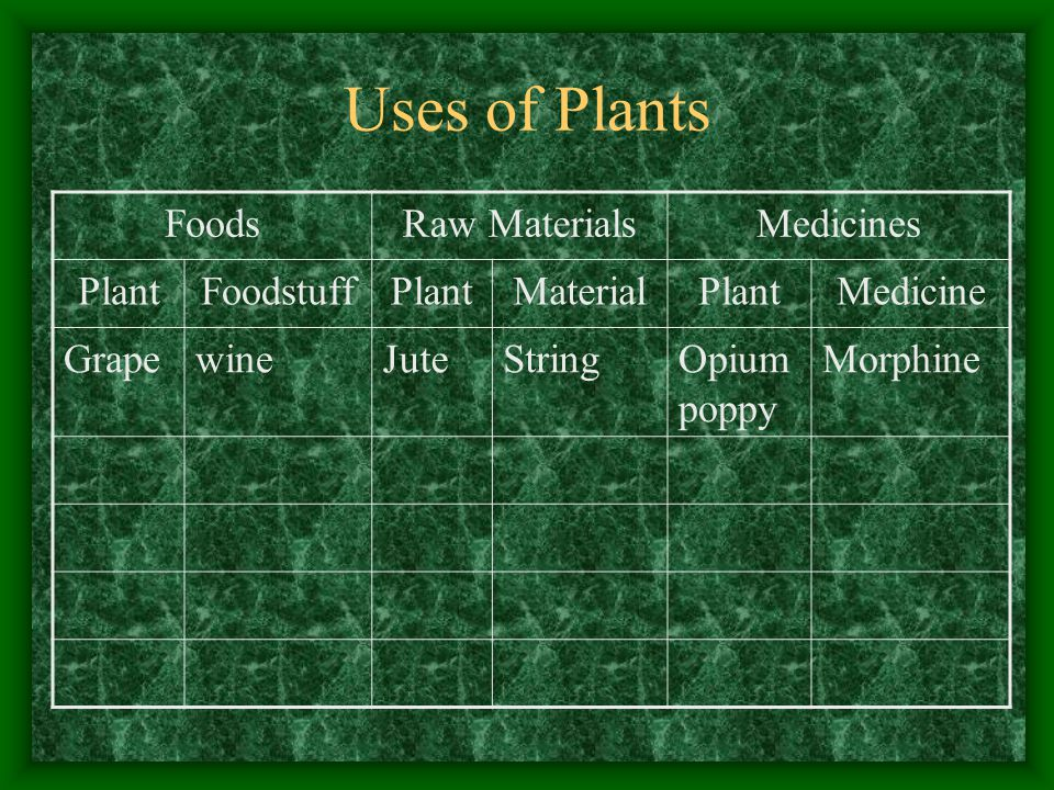 Uses of Plants FoodsRaw MaterialsMedicines PlantFoodstuffPlantMaterialPlantMedicine GrapewineJuteStringOpium poppy Morphine