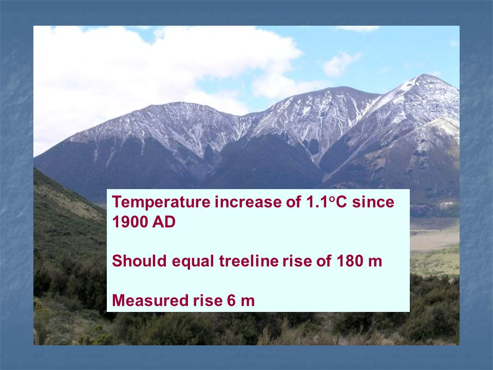 Temperature increase of 1.1 o C since 1900 AD Should equal treeline rise of 180 m Measured rise 6 m