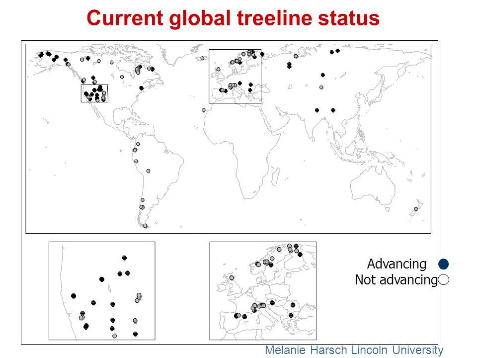 : Current global treeline status Melanie Harsch Lincoln University Advancing Not advancing