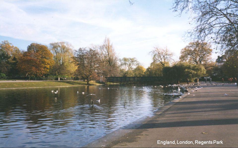 Autumn in New London