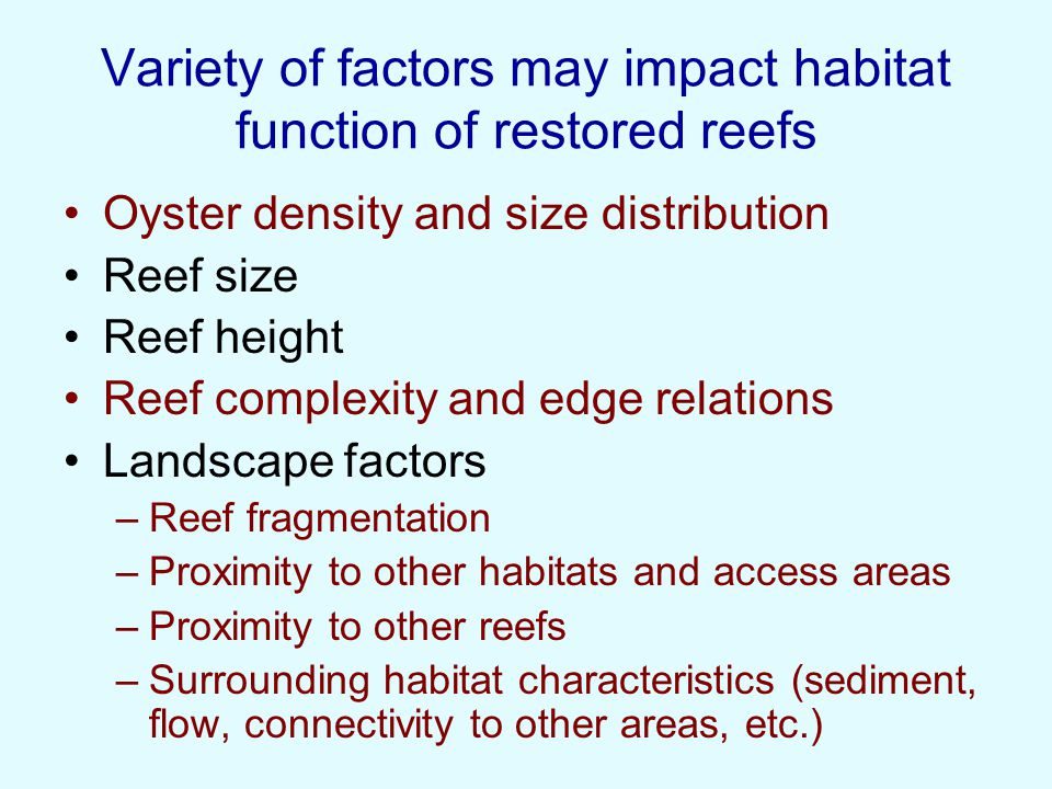 Created and Reference Reefs – similarity, age and oyster density effects Everett s Bay –2004; 4 acre site; shallow subitdal Hewletts Creek –2003 (2005); 1 acre site; intertidal Hoop Pole Creek –2003; 0.5 acre site; intertidal Williston Creek - Core Sound –2004; 2 acre site - shallow subtidal