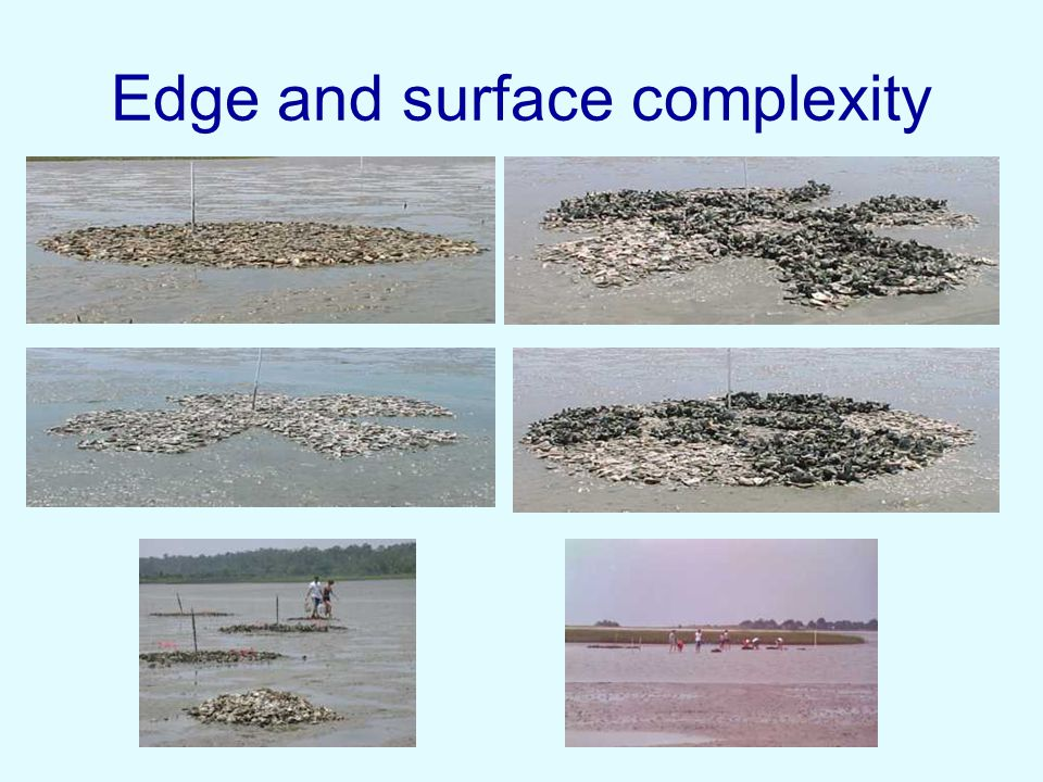 Edge and surface complexity