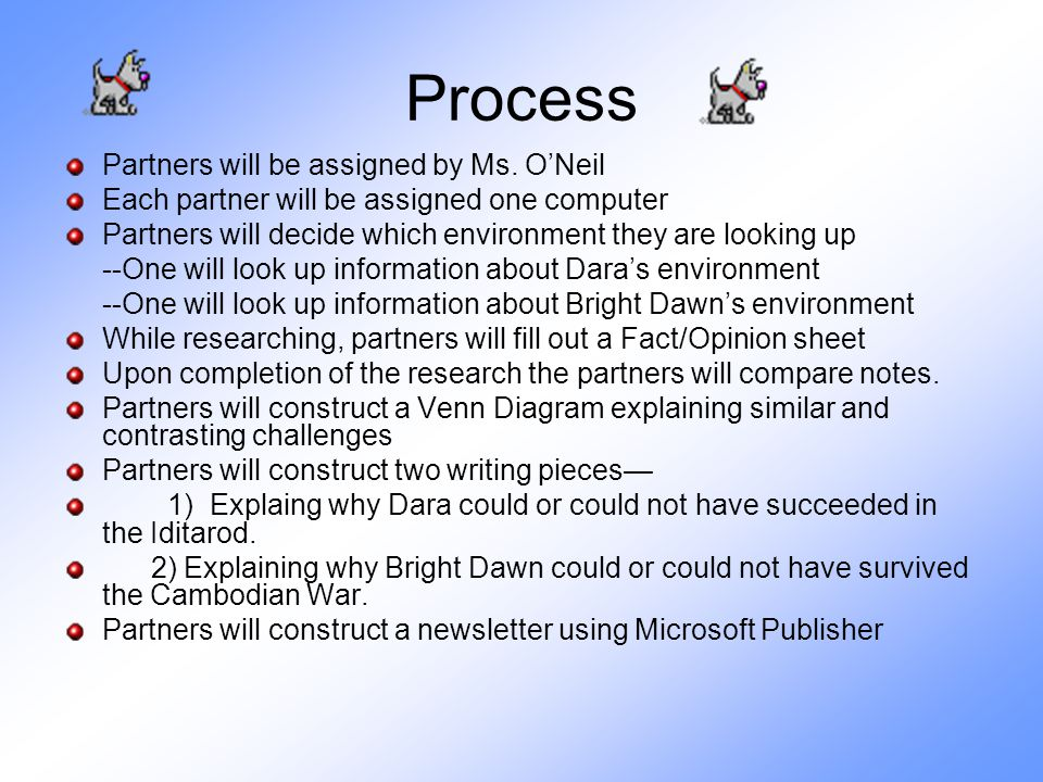 Process Partners will be assigned by Ms. O'Neil Each partner will be assigned one computer Partners will decide which environment they are looking up