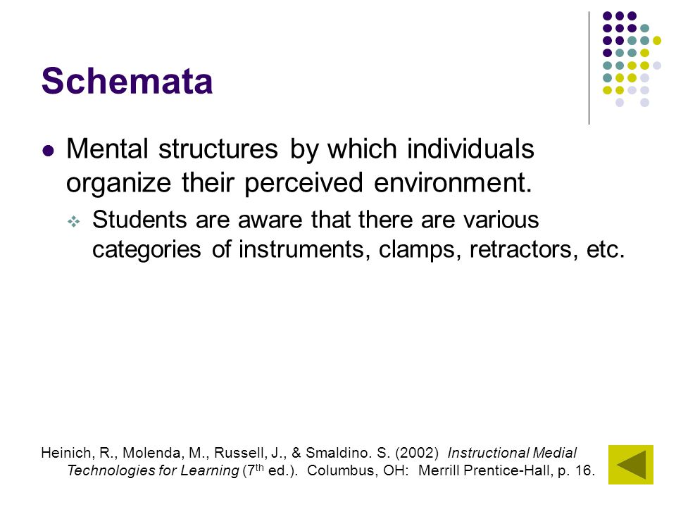 Schemata Mental structures by which individuals organize their perceived environment.  Students are aware that there are various categories of instru