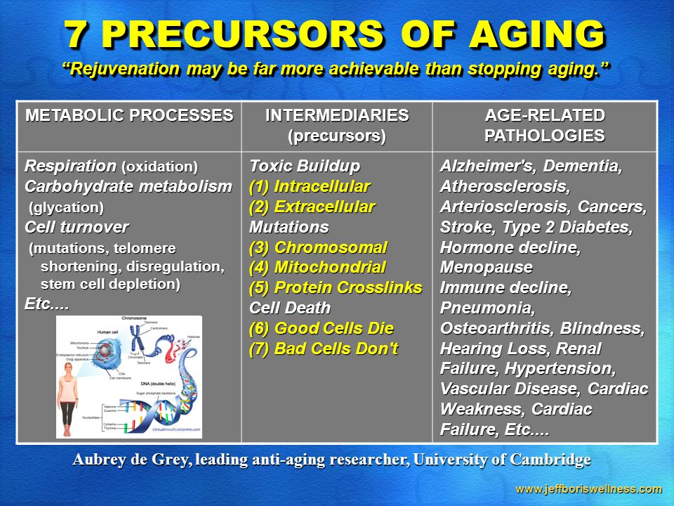 www.jeffboriswellness.com METABOLIC PROCESSES INTERMEDIARIES(precursors) AGE-RELATED PATHOLOGIES Respiration (oxidation) Carbohydrate metabolism (glycation) Cell turnover (mutations, telomere shortening, disregulation, stem cell depletion) shortening, disregulation, stem cell depletion)Etc....