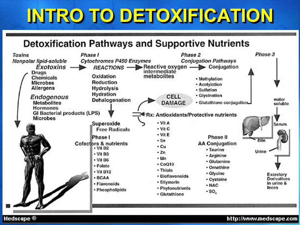 www.jeffboriswellness.com INTRO TO DETOXIFICATION