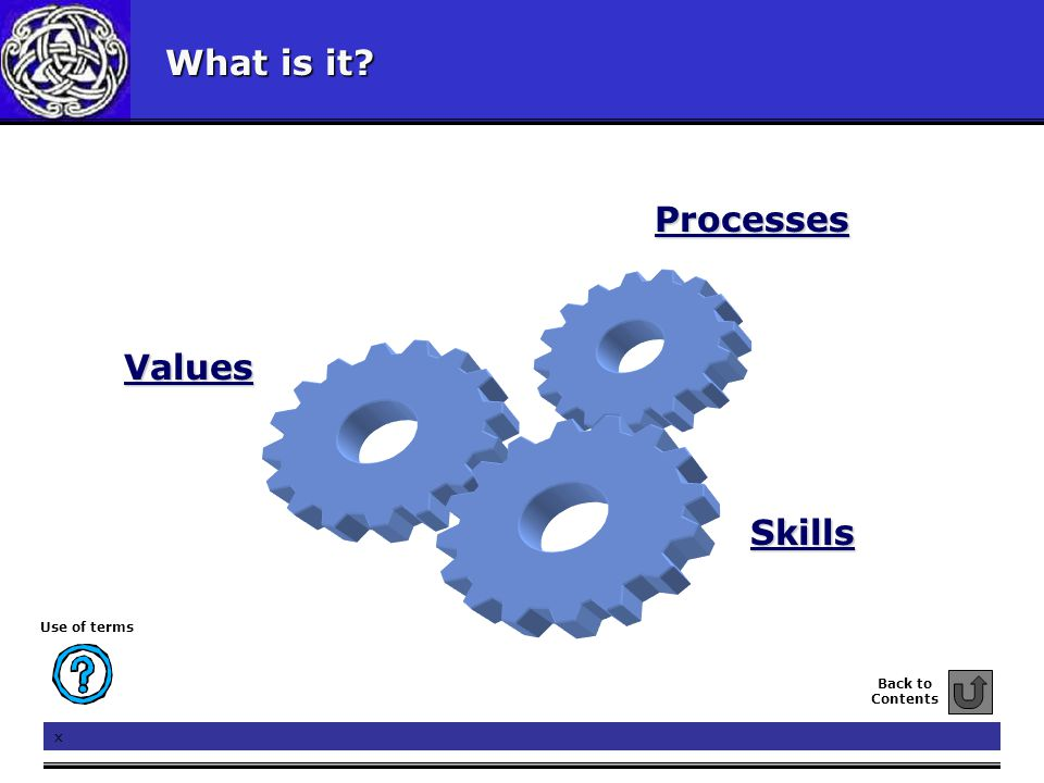 What is it? Values Skills Processes Back to Contents Use of terms x