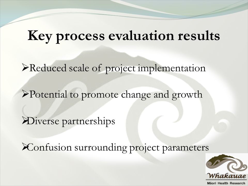 Key process evaluation results  Reduced scale of project implementation  Potential to promote change and growth  Diverse partnerships  Confusion s