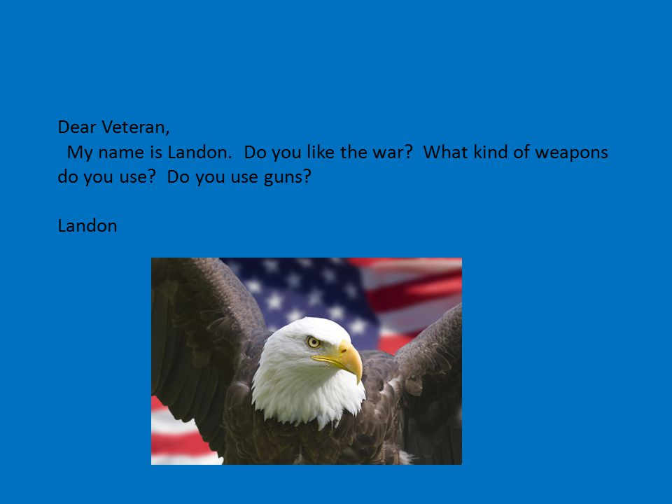 Dear Veteran, My name is Landon. Do you like the war.