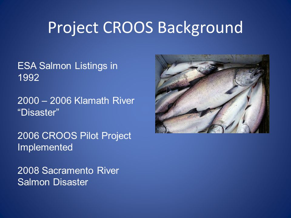 Project CROOS Background ESA Salmon Listings in 1992 2000 – 2006 Klamath River Disaster 2006 CROOS Pilot Project Implemented 2008 Sacramento River Salmon Disaster