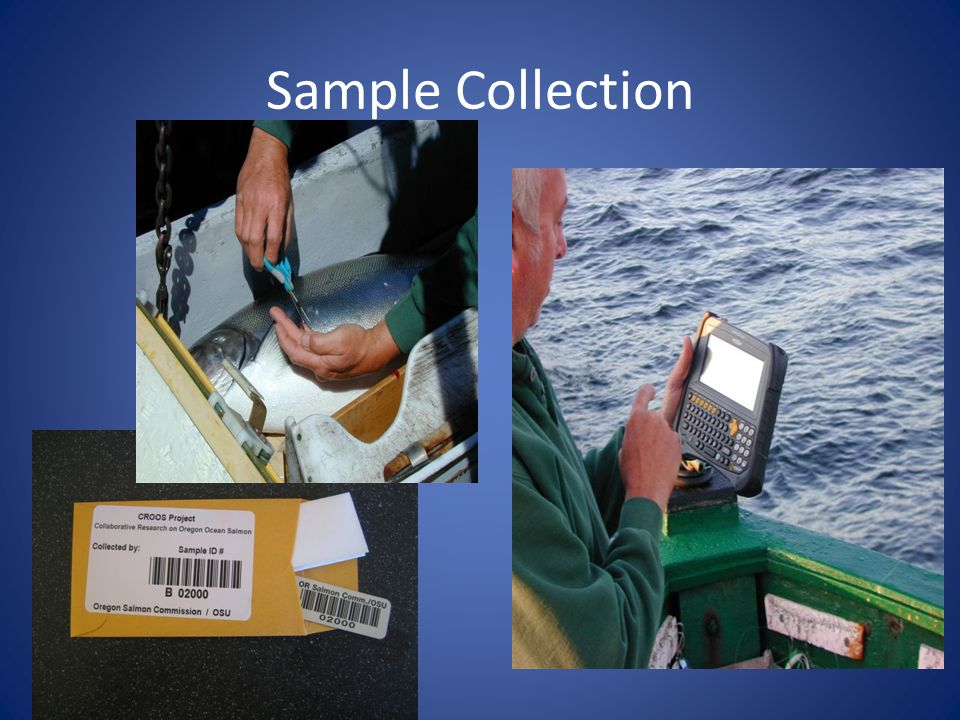 Possibilities Tracking systems for seafood products that are designed to meet the needs and marketing demands for specific fisheries Fishermen portals – where fishermen can view their own data and make smart decisions about where and how they fish, track bycatch areas, etc.